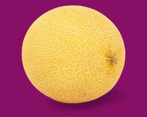a big melon