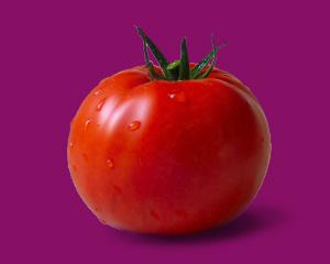 本週的寶寶跟一顆蕃茄一樣大
