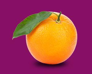 本週的寶寶跟一顆橘子一樣大